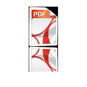 brochure pdf_icon
